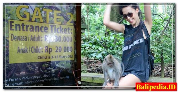 Tiket Masuk Monkey Forest Ubud