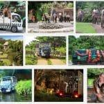 Foto Bali Safari And Marine Park
