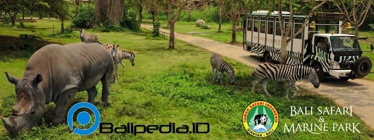 Bali Safari and Marine Park harga tiket domestik