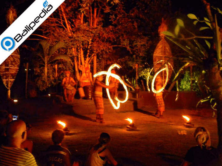 Fire dance show bali safari