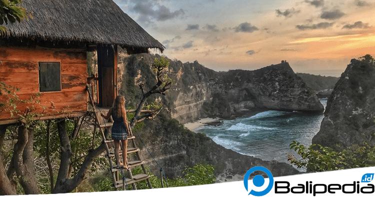 objek wisata unik di Bali - Rumah Pohon Molenteng