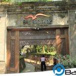 Bali Bird Park : Wisata Taman Burung Menarik dan Edukatif Bagi Keluarga